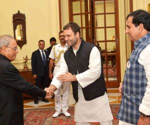 Congress delegation calls on President Mukherjee