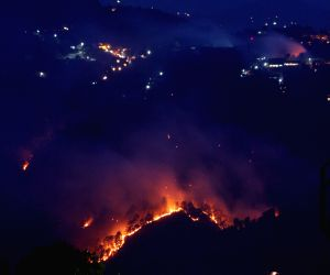 Fires ravage 20,000 hectares of Himachal forests in two months