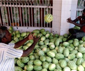 Watermelons flood fruit market during summers