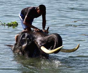 Morigaon (Assam): Hot day