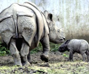 A Rhinoceros with its baby at Sanjay Gandhi Biological Park