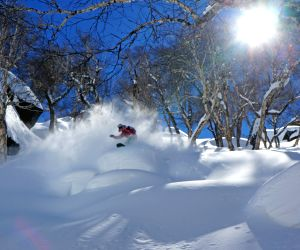 Global recession melts Himachal's heliskiing business