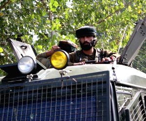 Hizbul militant killed in Kashmir gunfight