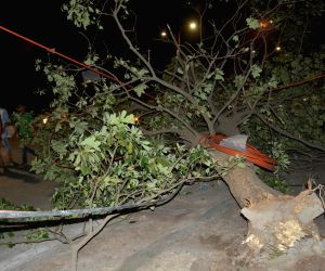 : Lucknow: Storm hits UP capital
