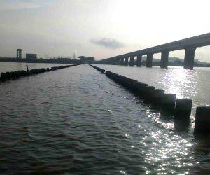 Godavari river - overflow