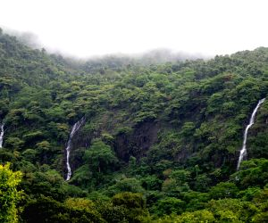 Netravali (Goa): Netravali Wildlife Sanctuary
