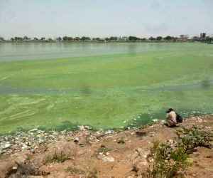 Polluted Hussain Sagar lake