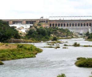 Water level raises in Krishna Raja Sagar