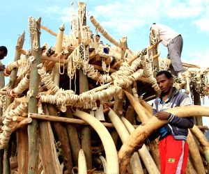 ETHIOPIA ADDIS ABABA IVORY BURNING