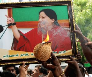 Tamil Nadu assembly pollsAIADMK celebrations