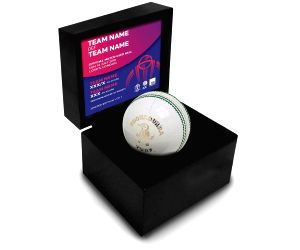 India-Pakistan match ball sold for Rs 1.5 lakh