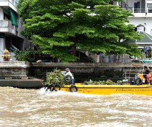 THAILAND-BANGKOK-CHAO PHRAYA RIVER-WATER HYACINTH-REMOVAL