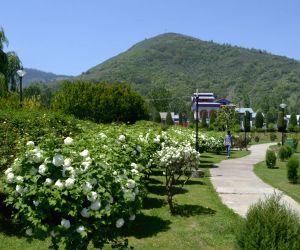Gulnar Park