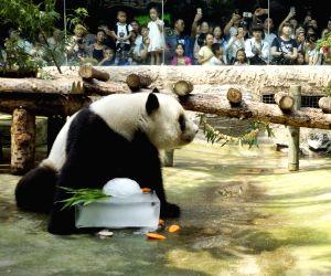 CHINA-BEIJING-HEATSTROKE PREVENTION-ANIMALS