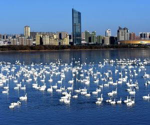 CHINA-WETLAND PROTECTION