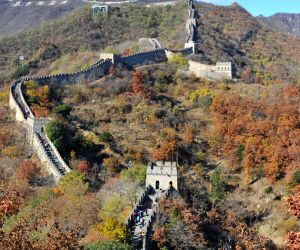 Photo taken on Nov. 3, 2013 shows the autumn scenery of Mutianyu Great Wall in Beijing