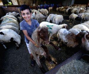 LEBANON-BEIRUT-EID AL-ADHA-PREPARATION