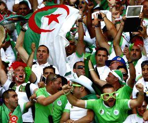 Belo Horizonte: Belgium v/s Algeria Group H match of FIFA World Cup 2014