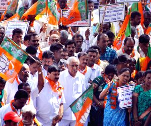 BJP protests against irregular power supply