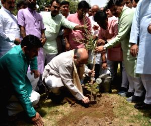 World Environment Day - Amit Shah