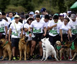 COLOMBIA BOGOTA SOCIETY PET RUN