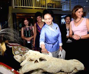 Brisbane (Australia): Xi Jinping, visits Queensland Museum