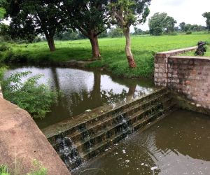How check dams helped grow green patch in arid Bundelkhand