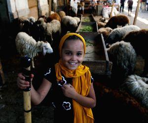 EGYPT-CAIRO-EID AL-ADHA-LIVESTOCK MARKET-RECESSION