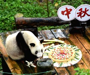 CHINA-CHONGQING-MID-AUTUMN FESTIVAL-GIANT PANDA