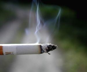 Smoking strong pot daily increases psychosis risks