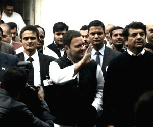 Congress internal polls - Rahul files nomination papers