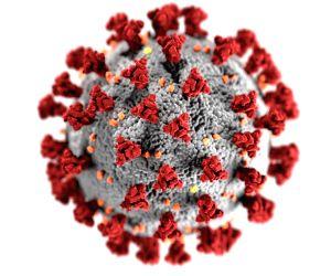 Mutant Covid virus detected in one person in Kerala