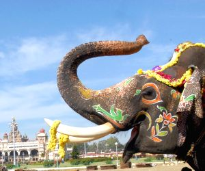 Dasara elephants' farewell ceremony