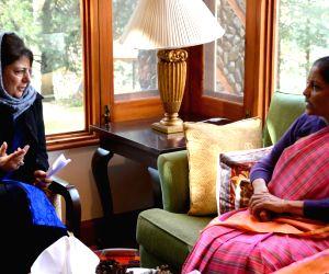 Defence Minister meets J&K CM