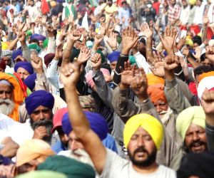 Farmers body rejects govt proposal to suspend farm laws