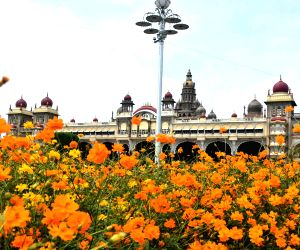 Mysuru Palace gardens full of colorful flowers ahead of Dasara celebrations