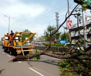 Storm havoc in Hyderabad