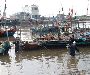 Hai Phong: Residents reinforce house