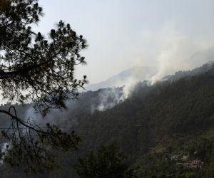 Himachal Pradesh: Forest fire