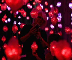 U.S. HOUSTON PIPILOTTI RIST EXHIBITION