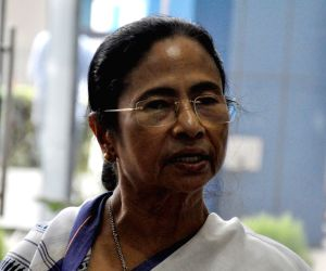 Forest cover in Bengal up, says Mamata on Biodiversity Day