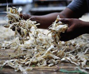 INDONESIA JAKARTA DRY FISH DAILY LIFE