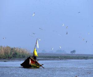 Khurda And Ganjam (odisha): Chilika Lake