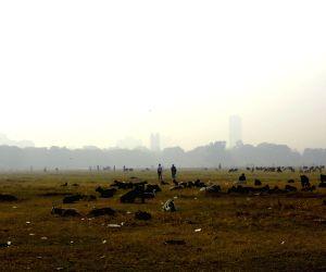A foggy morning in Kolkata