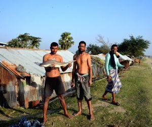 BANGLADESH-KUAKATA-FISH DRYING