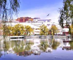 CHINA TIBET LHASA SPRING SCENERY