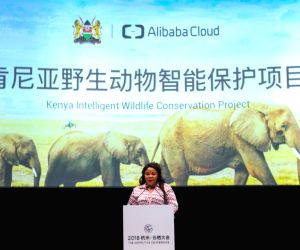 Alibaba's cloud services to help Kenya protect wildlife