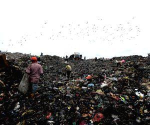 Shun plastics, plant more trees, create behavioural changes