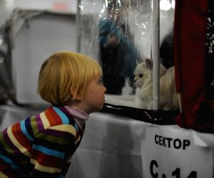 Moscow (Russia): Grand-prix Royal Canin International Cat Show in Moscow