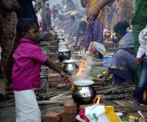 mumbai-women-celebrate-pongal-at-dharavi-in